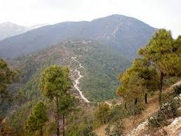 Champa Devi trail